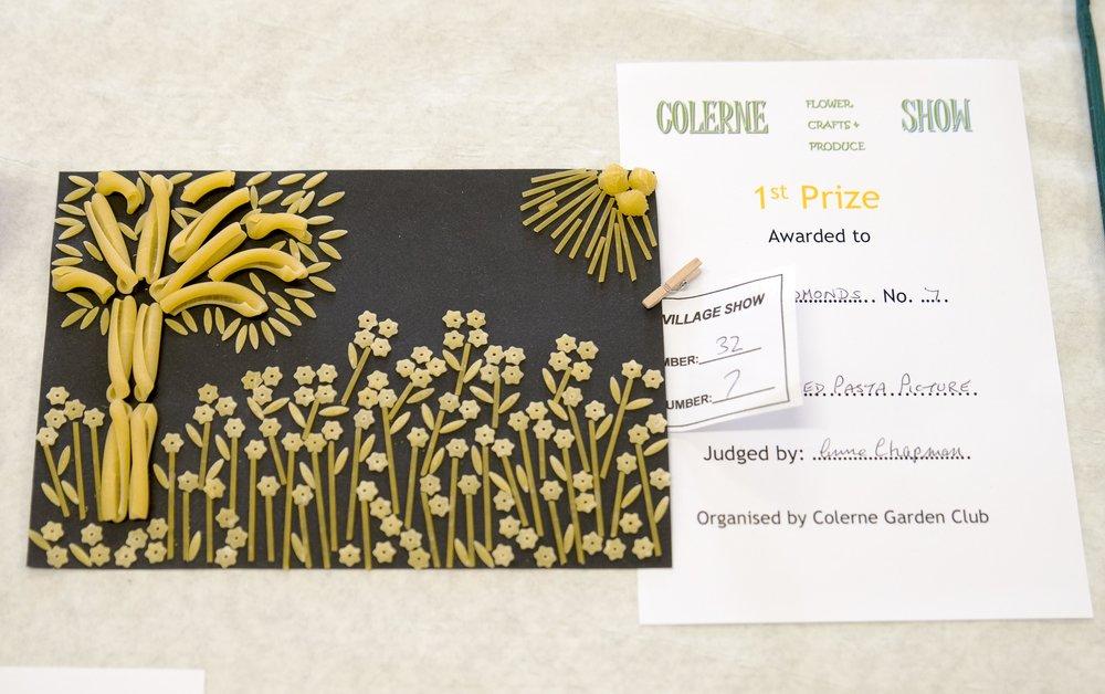 20160731 Colerne Village Show_0013.jpg