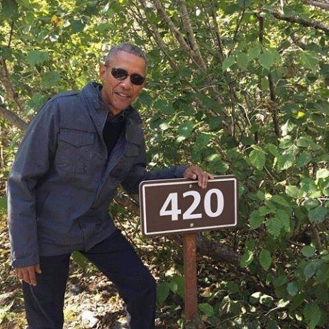 Happy Holiday!  #420 #adultuse #cannabiscommunity #legalizeit #endprohibition #weed #marijuana #cannabis #THC #CBD #DMV #thanksobama
