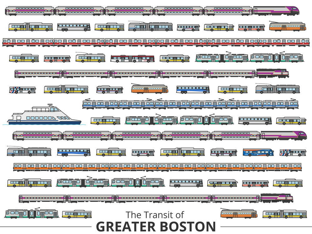Click image to enlarge | Boston Identifying Guide