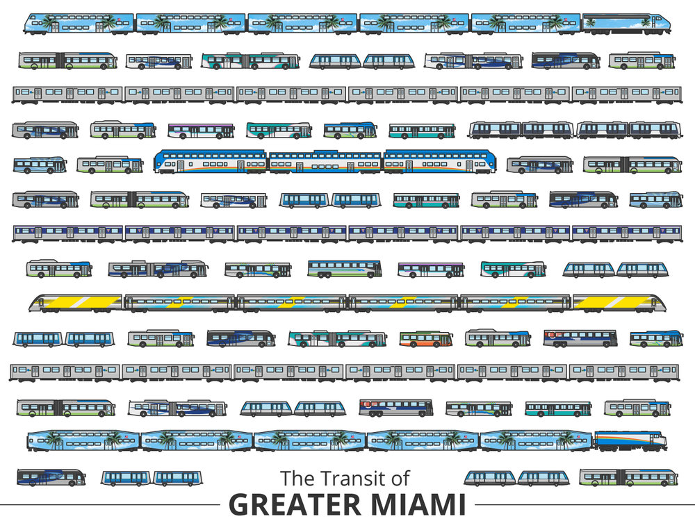 Click image to enlarge | Miami Identifying Guide