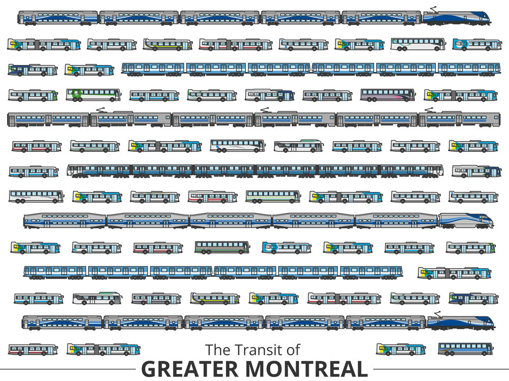 Click image to enlarge | Montreal Identifying Guide