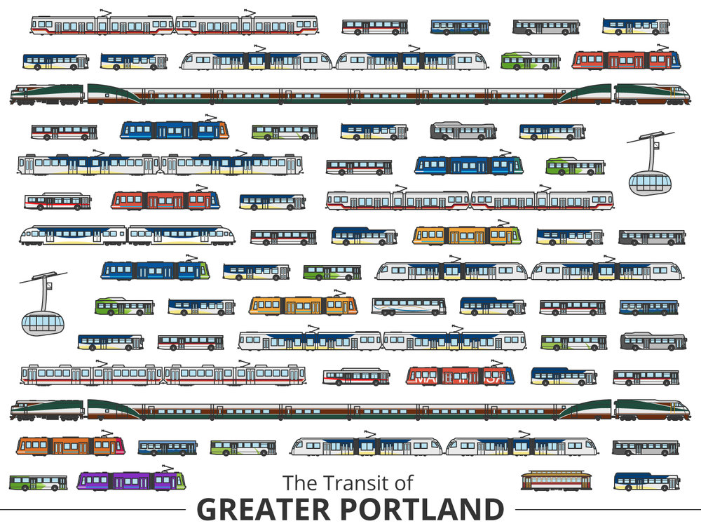Click image to enlarge | Portland Identifying Guide