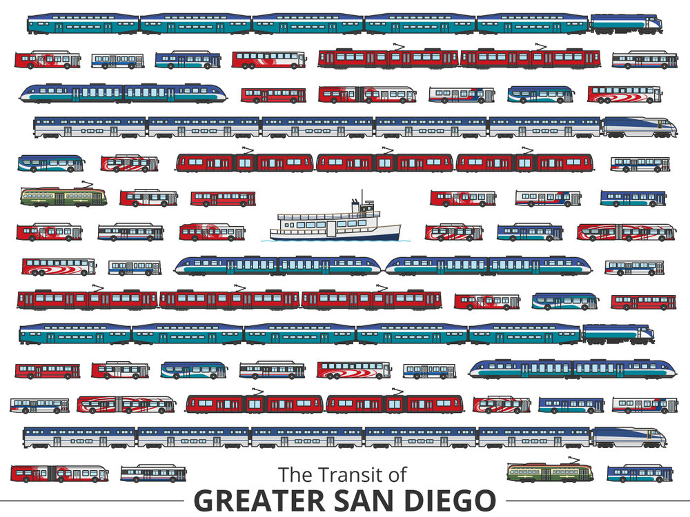 Click image to enlarge | San Diego Identifying Guide