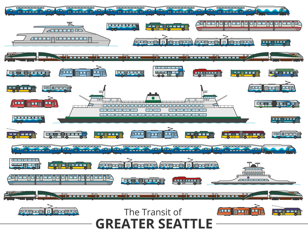 Click image to enlarge | Seattle Identifying Guide