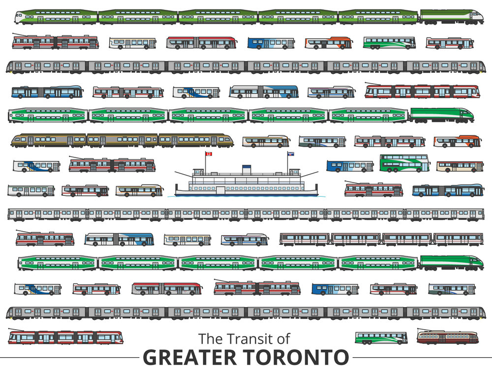 Click image to enlarge | Toronto Identifying Guide