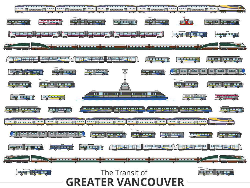 Click image to enlarge | Vancouver Identifying Guide