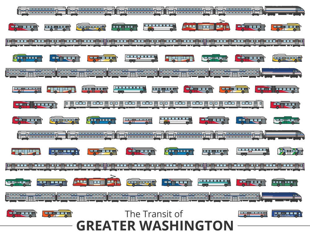 Click image to enlarge | Washington Identifying Guide