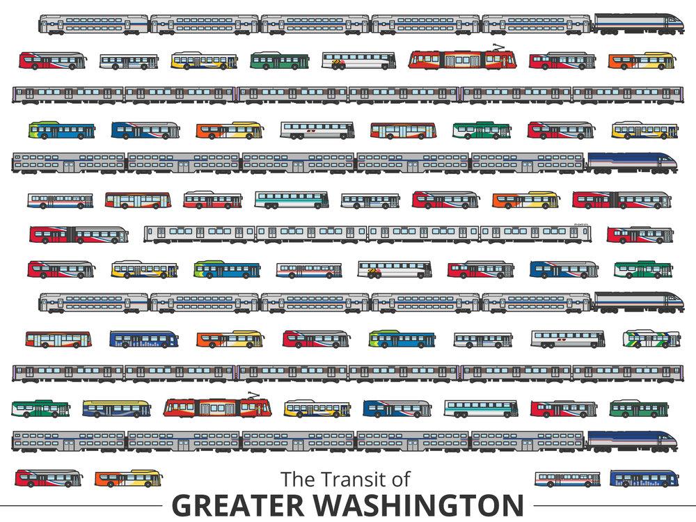 Click image to enlarge | Washington Identifying Guide