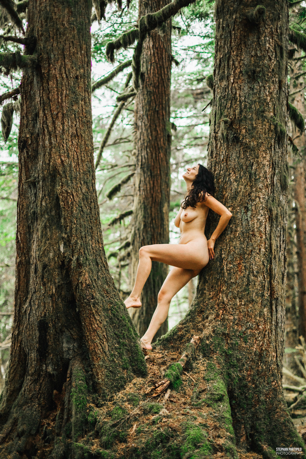 Heather Snoqualmie Forest WA 0G5A6588 copy.jpg