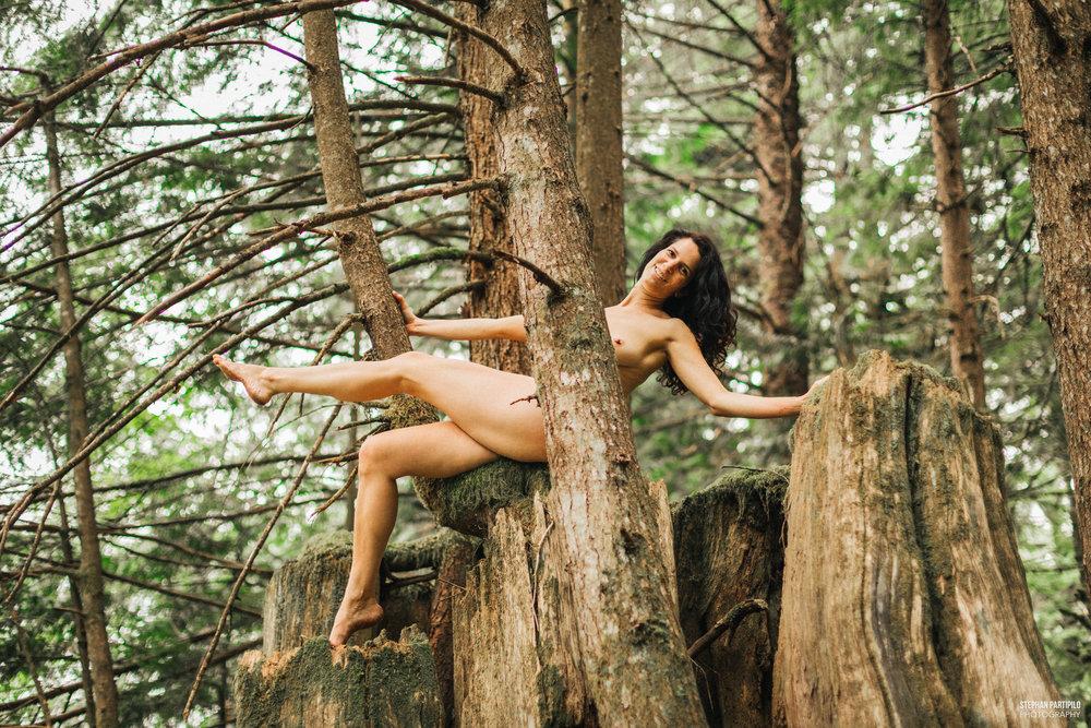 Heather Snoqualmie Forest WA 0G5A6371 copy.jpg