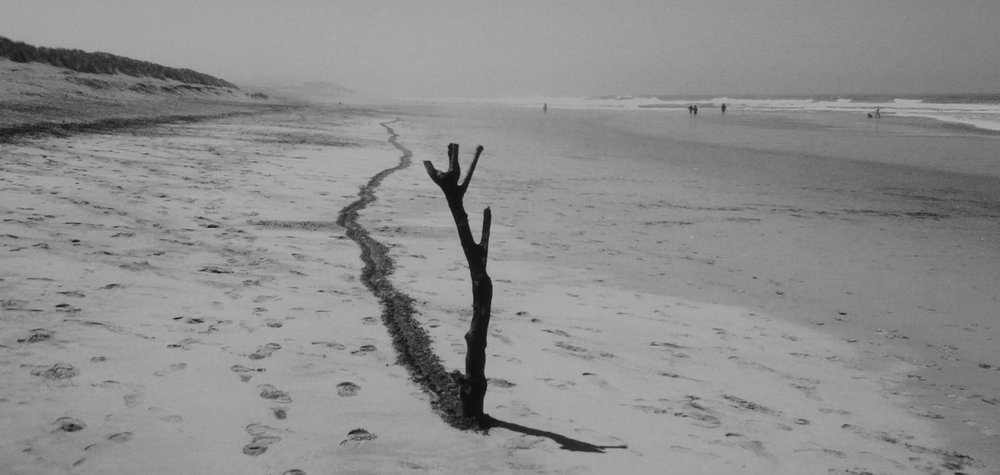 4 mile line ocean beach #2 1.1.1996 ended at about 9 a.m., gelatin silver print, mark petersen 1996