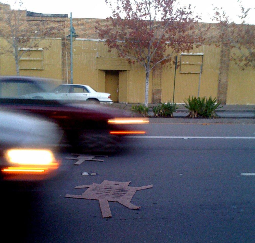 road kill car pets san pablo avenue.jpg