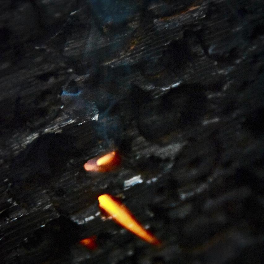 wood screen burning shiva tongue copy.jpg