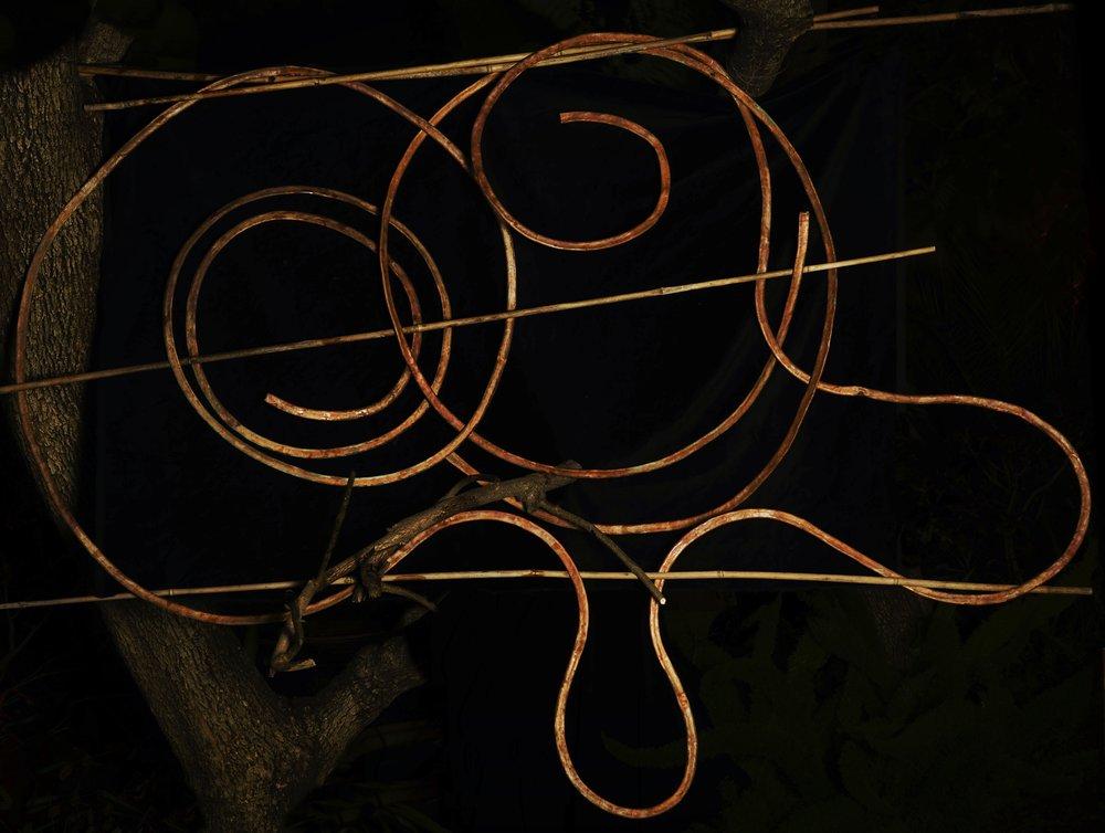 "vortex 2018. copper bamboo 70x95"""