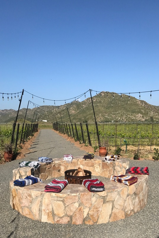 Fire pit and vineyard as seen on our arrival at Trevista