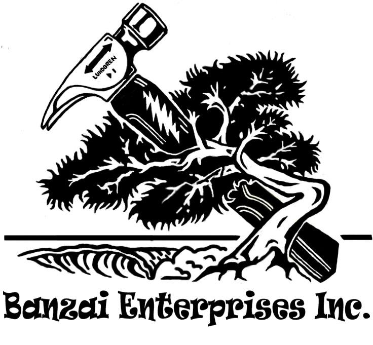 Banzai Enterprizes Inc.16.jpg