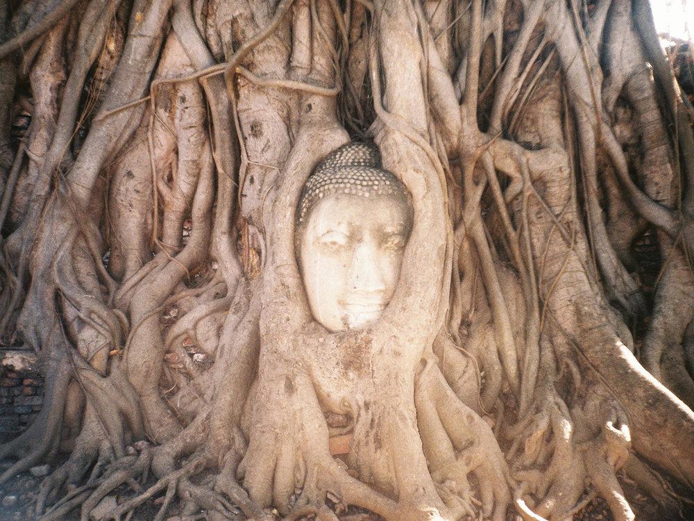 007_HandZaround DiegoGorrion Thailand Cambodia.JPG