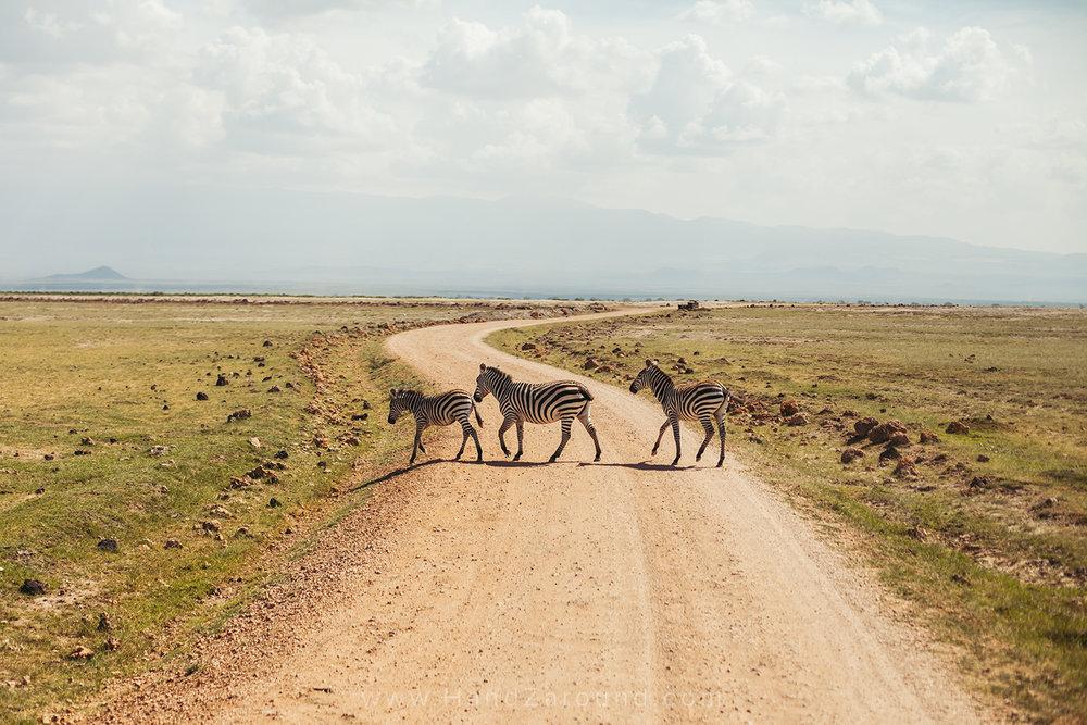 021_HANDZAROUND_TRAVEL_PHOTOGRAPHY_FILMS_WORK_WITH_US_KENYA_RWANDA_UGANDA_EAST_AFRICA_BLOGGER.jpg