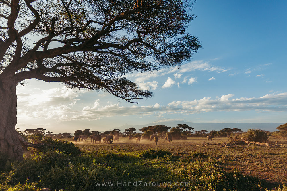 024_HANDZAROUND_TRAVEL_PHOTOGRAPHY_FILMS_WORK_WITH_US_KENYA_RWANDA_UGANDA_EAST_AFRICA_BLOGGER.jpg