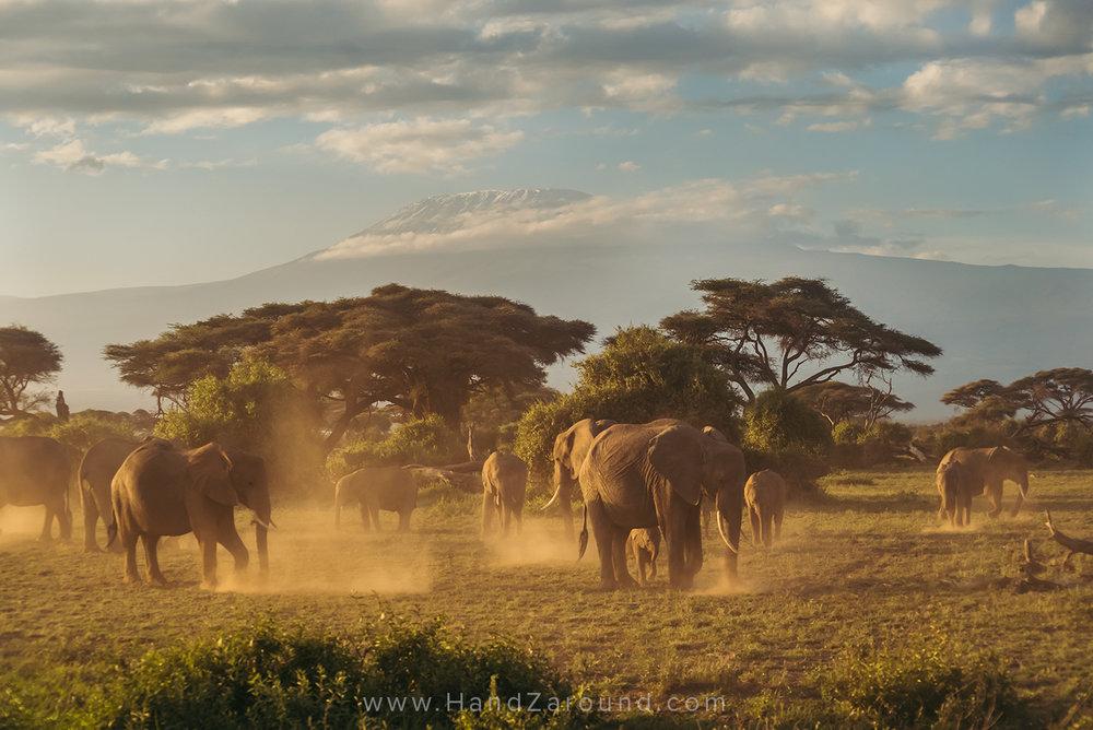 026_HANDZAROUND_TRAVEL_PHOTOGRAPHY_FILMS_WORK_WITH_US_KENYA_RWANDA_UGANDA_EAST_AFRICA_BLOGGER.jpg
