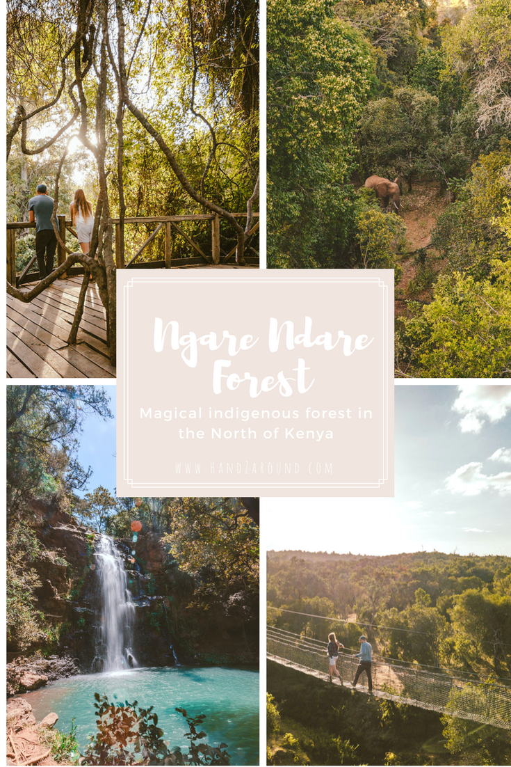 Ngare Ndare Forest - Northern's Kenya Hidden Gem by HandZaround in Collaboration with NRT and The Big North