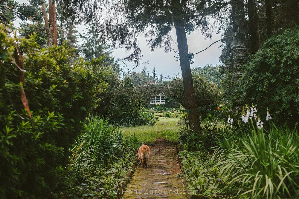 14_What_To_Do_In_Gisenyi_Lake_Kivu_Backpacking_Rwanda_Visiting_Gisenyi_Inzu_Lodge_HandZaround.jpg