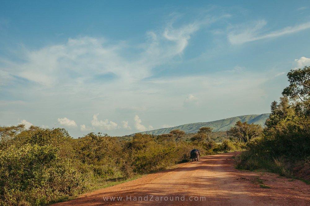 114_HandZaround_Akagera_African_Parks_Rwanda_East_Africa.jpg