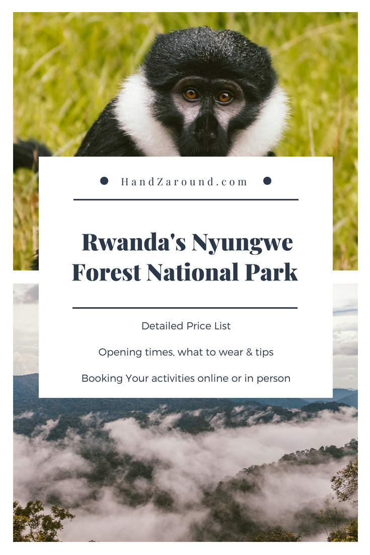Rwanda's Nyungwe Forest National Park - Accommodation, Activities, Prices | HandZaround.com.png