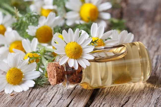 - Mention about chamomile, with a recipe for chamomile concentrate from my Apothecary page.