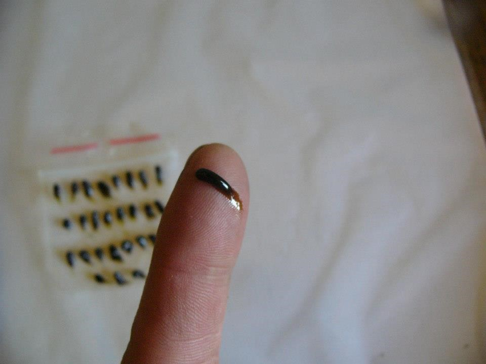 One maintenance dose of cannabis oil is the size of a grain of rice. The recipe for cannabis oil made with an alcohol reduction is on the Apothecary page. photo: web