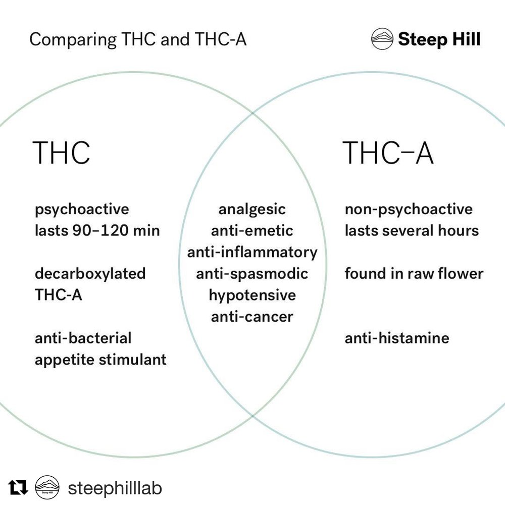 THC vs. THCA - You don't have to get high to heal with cannabis.THCA is the compound THC, prior to heat activating its psychoactive properties. The benefits are still in there, with or without the high.