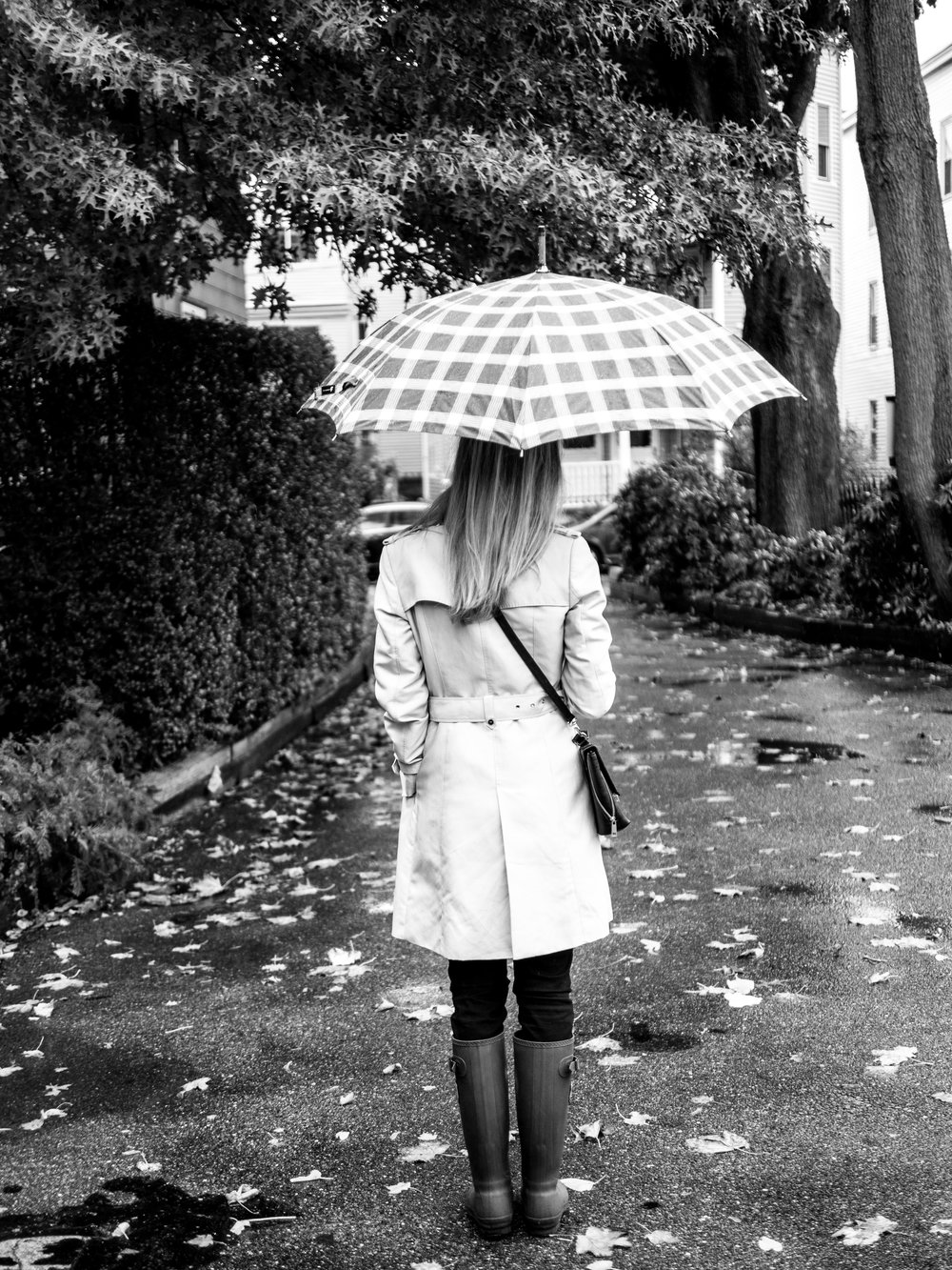 Rainyday shots_1.jpg