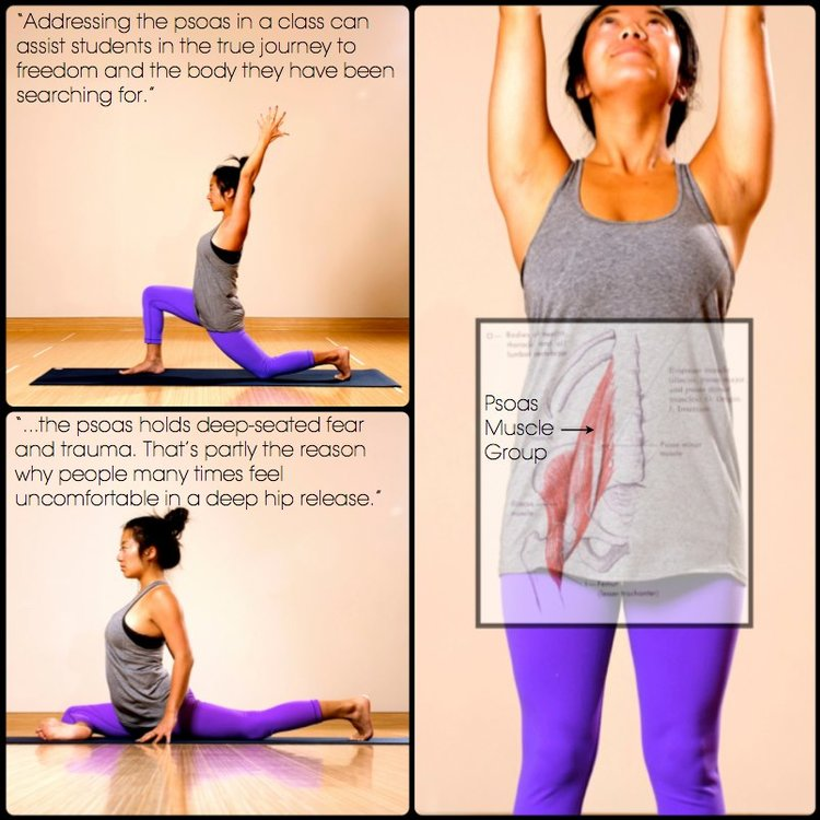 Your PSOAS - What it is and Why You Should Care! — YOGALIFE STUDIOS ...