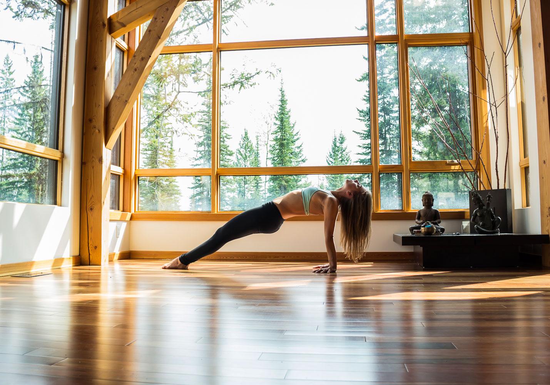 A yogi in upward plank pose, PURVOTTANASANA