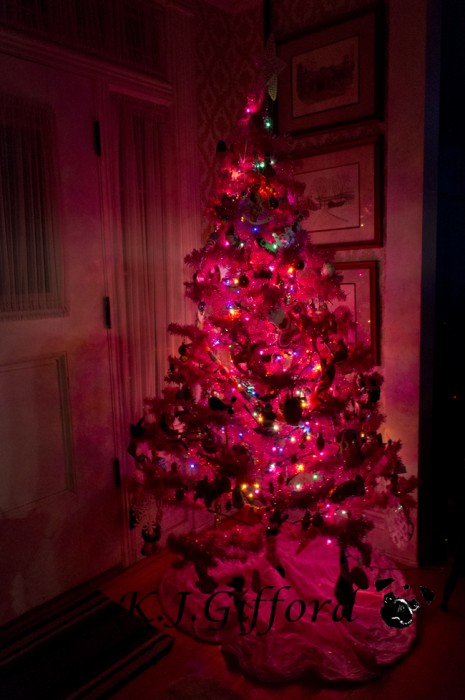 Pink Christmas Tree at Night