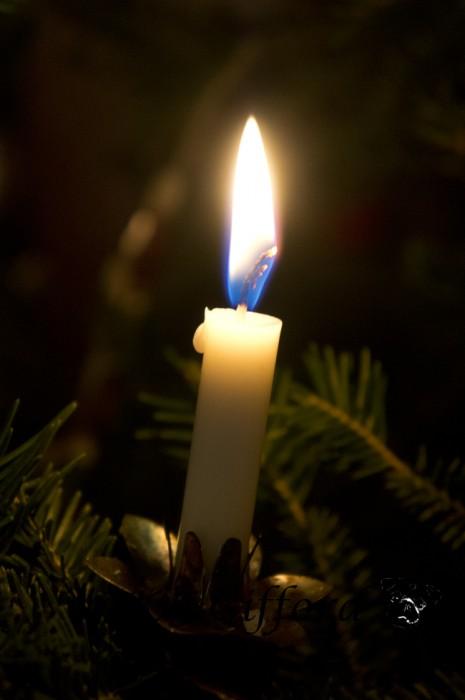 Candle burning on Christmas Tree