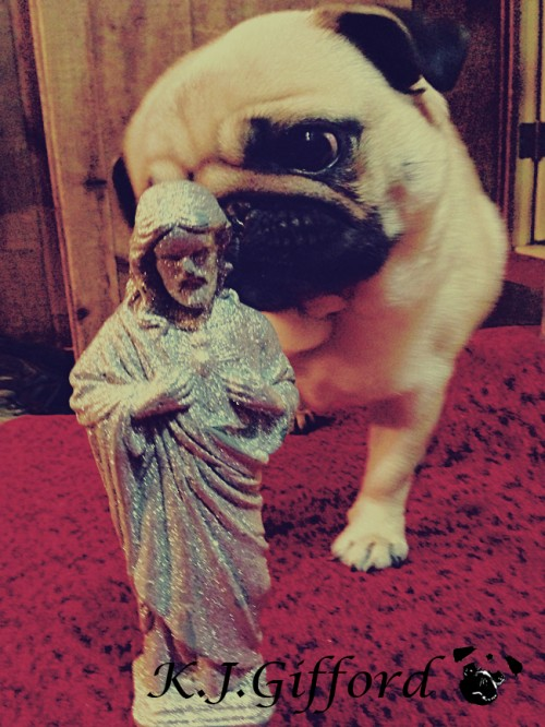 Pug and Silver Jesus Bank