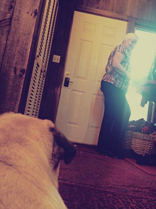 Pug and Woman