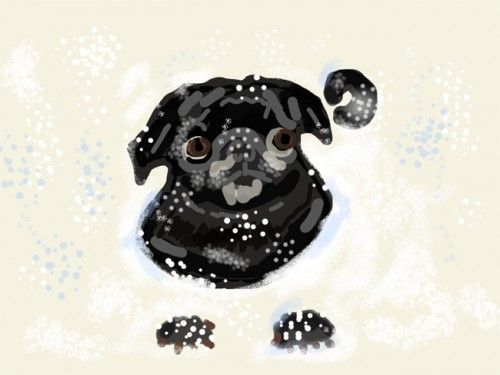 Drawing Black Pug in Snow