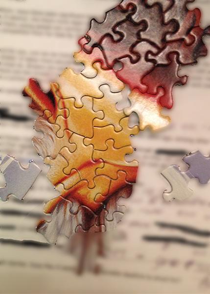 puzzle copy