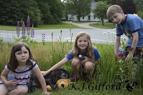 Tori, Vader, Humpie Doggie, Catherine and Avery