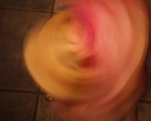 28 Portfolio Whirling Dervish