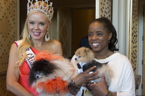 Ms. California and her doggie celebrities pose with Kimberly Gauthier of Keep the Tail Waggin'