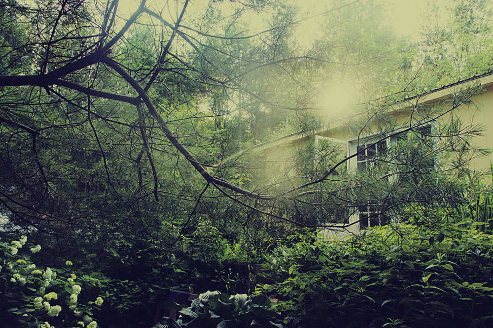 Joan's house.jpg