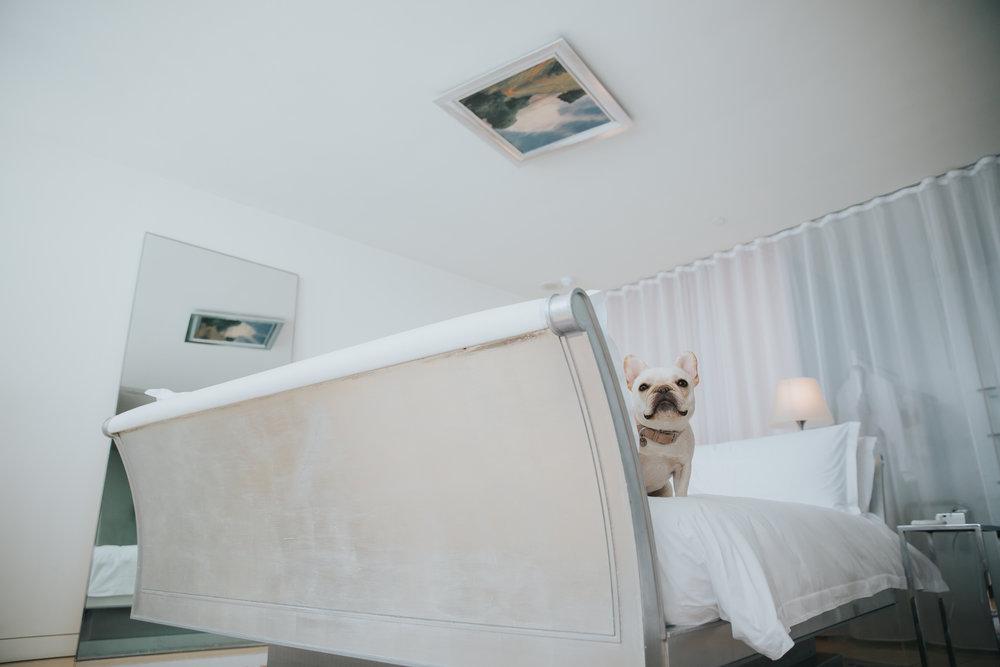 wheres-the-frenchie-travel-blog-blogger-in-london-hotel-sanderson-fira-weston-minas-planet-jasmina-haskovic12.jpg