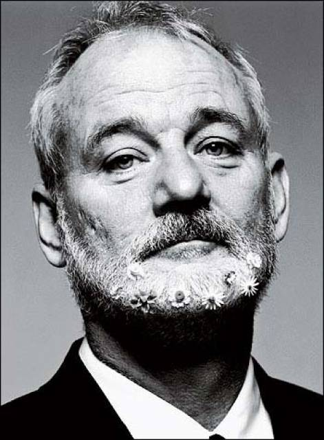 804803-bill_murray.jpg