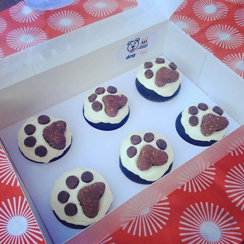 dogcupcakes