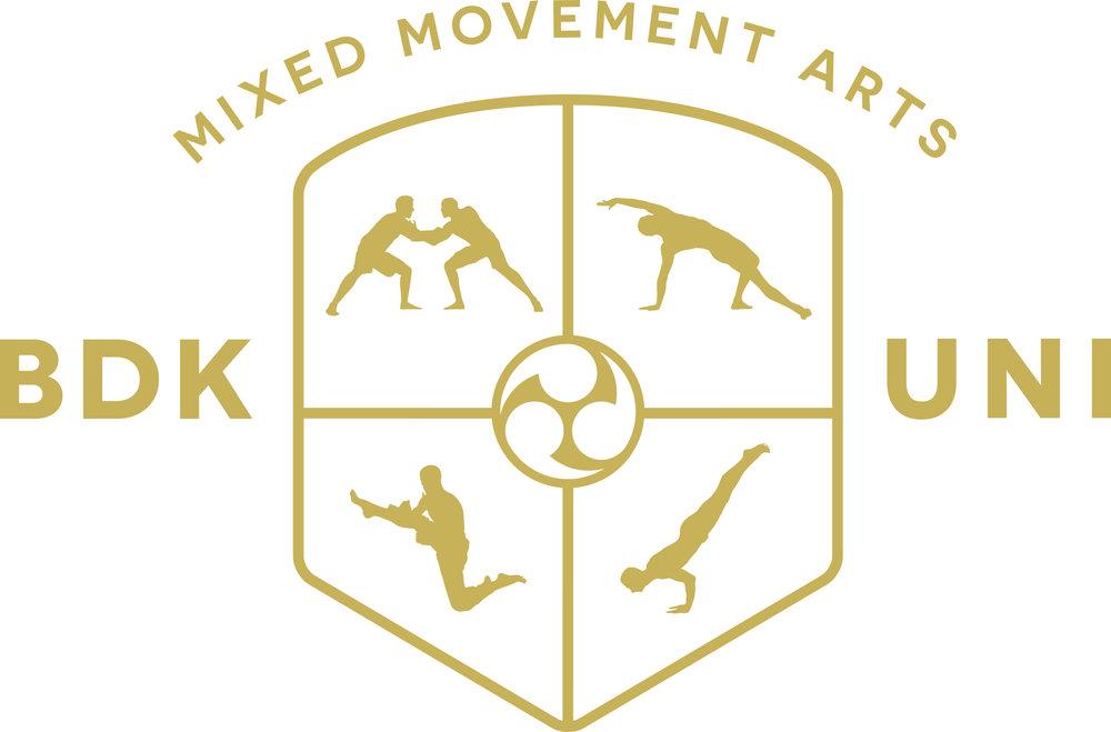 Budokon Germany — Budokon Mixed Movement Arts University by Cameron ...