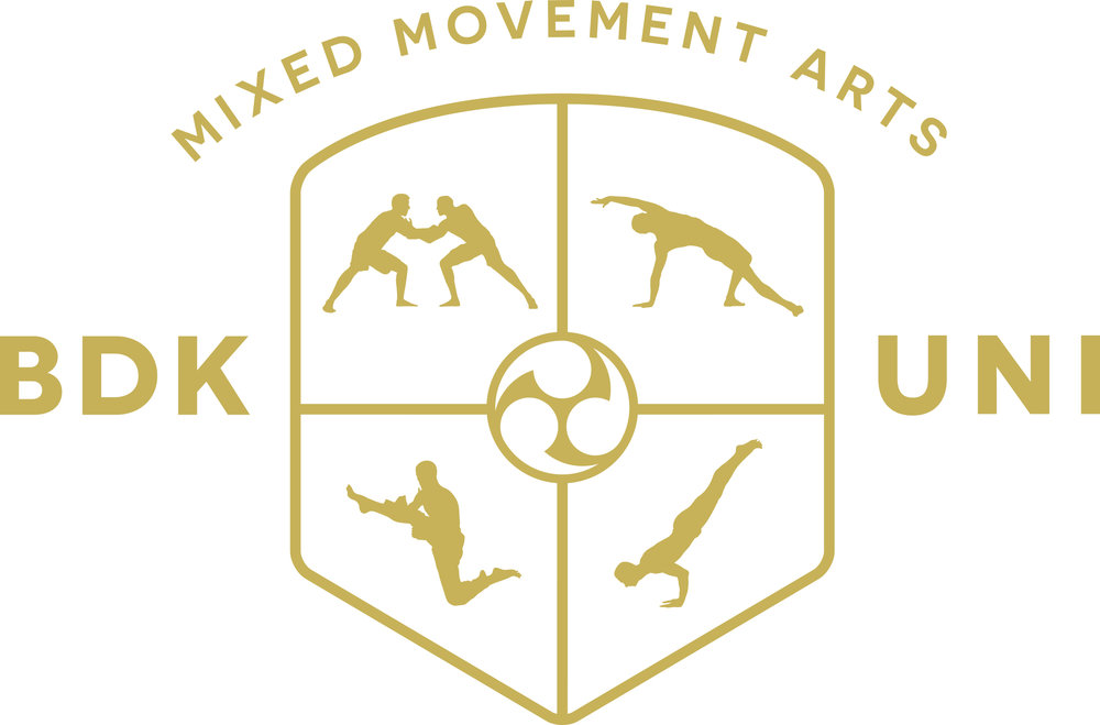 What Is BDK Yoga Budokon Mixed Movement Arts University By Cameron Shayne