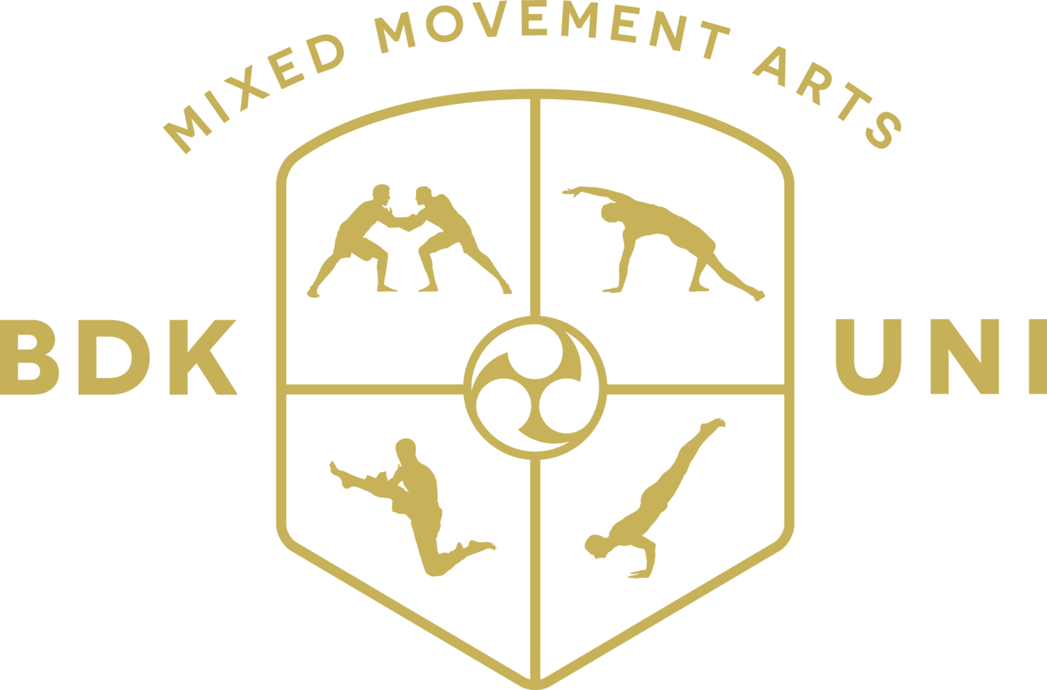 Budokon Mixed Movement Arts University by Cameron Shayne